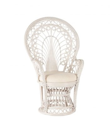 Baby - Wedding Shower Chair